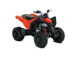 2021 CAN-AM DS 250