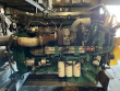 VOLVO D13 ENGINE FOR A 2009 VOLVO VNM