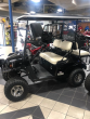 2017 E-Z-GO GOLF CART