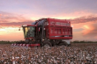 2014 CASE IH MODULE EXPRESS COTTON PICKERS MODULE EXPRESS