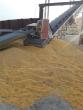 2020 IRON CITY SUPPLY 42 GU AGRICULTURE EQUIPMENT CITY SUPPLY 42 GU
