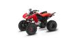 2021 HONDA TRX250