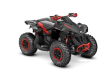 2020 CAN-AM RENEGADE 1000