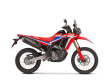 2021 HONDA CRF300L RALLY ABS