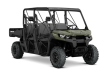 2019 CAN-AM DEFENDER MAX DPS