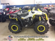 2019 CAN-AM RENEGADE 570