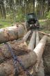 VERIGA LESCE FORESTRY PROGRAM