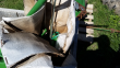 JOHN DEERE BALL INDICATOR FOR 900 SERIES PLATFORM