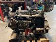 INTERNATIONAL DT466C ENGINE
