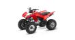 2020 HONDA TRX250